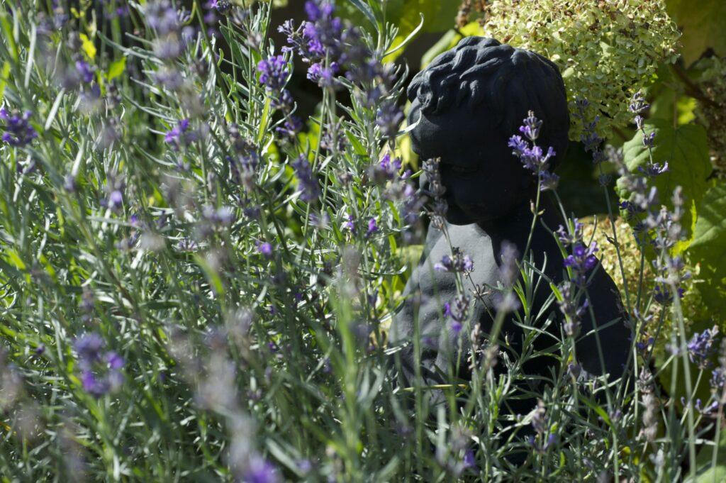 Aromaterapii si na naší zahradě užívá i čůrající chlapeček - kopie slavné sošky z Brusselu.