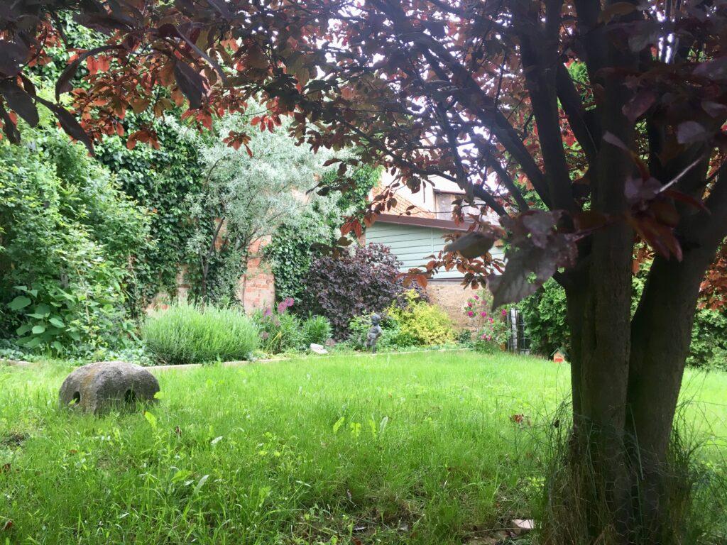 Nejlepší aromaterapie je pobyt na zahradě, třeba mezi záhony levandule.